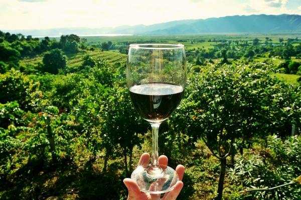 wine-2173239-1920-opt51002525-AF0A-38FC-DE00-E330D41DB89E.jpg