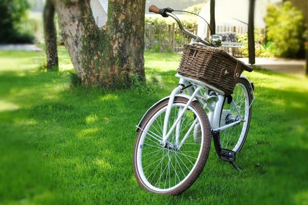 bicycle-2471178-1920-pix-opt7EC85F6C-0B4B-B663-48FC-F2F63BDFBD3A.jpg