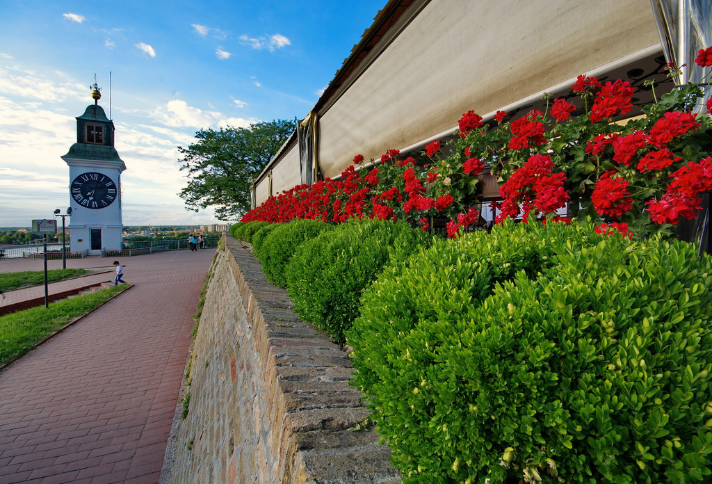Petrovaradin fortress in Novi Sad,full day trip from Belgrade